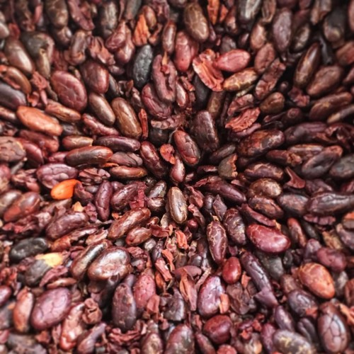 Cacao beans in the grinder at Diego's Chocolate, San Pedro La Laguna