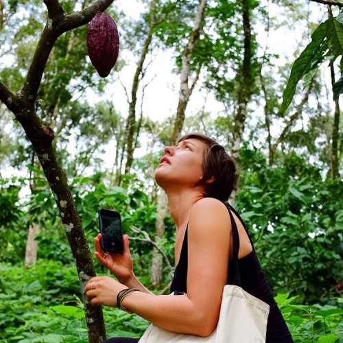 Mesmerised by the wondrous cacao!