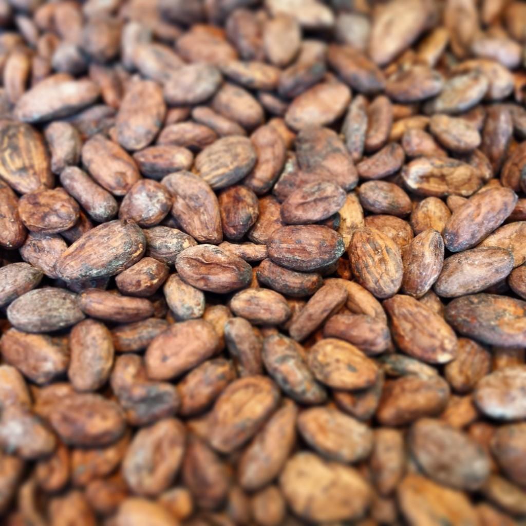 Roasting Nicaliso cocoa beans